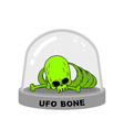 UFO Bones in Glass Bell Skull alien humanoid vector image