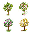set of decorative trees seasons vector image