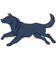 wolf running vector image