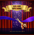 grand opening concept with red curtains vector image