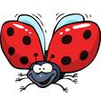 cartoon flying ladybug vector image