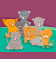 cute cat or kitten characters group vector image