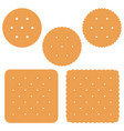 set of square and round crackek vector image