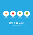 flat icon foliage set of leaf linden hickory and vector image