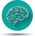 Human brain icon flat with shadow vector image