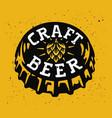 drink beer vector image