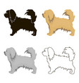 pekingese icon in cartoon style for web vector image