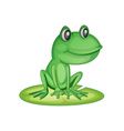 Frog on a lily pad vector image vector image