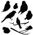 Bird SIlhouette Animal Clip Art vector image