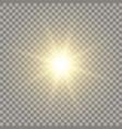 yellow realistic sun vector image