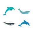 aqua mammal icon set flat style vector image