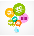 Colorful Natural Product Bio Green Labels Set vector image