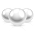 pearls vector image vector image