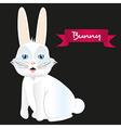 White rabbit sitting isolated on black background vector image