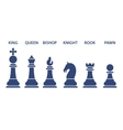 Set of named chess piece icons vector image vector image