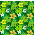 frangipani with monstera leaves pattern vector image