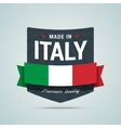 Made in Italy badge vector image