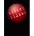 Dark Background of cricket ball vector image