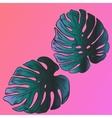 Exotic flowers set Botanical vintage vector image