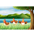 The three chickens at the riverbank vector image vector image