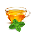 cup of tea with mint leaves vector image vector image