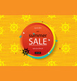 Summer discounts banner vector image
