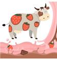 Fruit strawberry chocolate milk cow milk splash vector image
