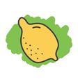 Cartoon doodle lemon vector image