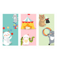 circus cats cards cheerful for vector image