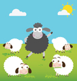 Black Sheep with make a difference vector image