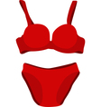 Red underwear vector image