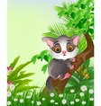squirrels on tree with tropical forest background vector image