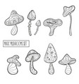 set of stylized magic mushrooms vector image