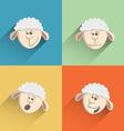 sheep flat design set 1 vector image