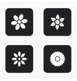 modern flower icons set vector image