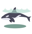 a cartoon beautiful killer whale vector image