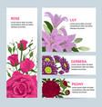 floral flower card invitation set greeting vector image