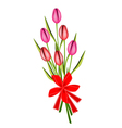 A Lovely Fresh Tulip Bouquet with Red Ribbon vector image