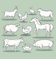 farm animals sketch vector image