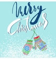 Merry Christmas Handdrawn lettering for Christmas vector image