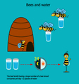 Bee infographics-2 vector image