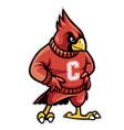 cardinal school mascot vector image