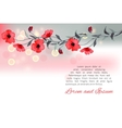 Flowers Poppies Red with Splashes of Watercolor vector image