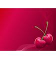 valentine heart-shaped cherries vector image