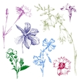 hand drawn spring flowers vector image vector image