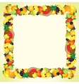 Colorful Fresh Fruits Border Design Image vector image