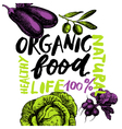 Eco food menu background Hand drawn sketch vector image