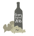 Wine bottle with a grapevine Grapes festival vector image