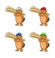 Beaver builder vector image