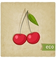 fruit eco old background vector image